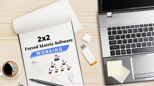 2x2 forced matrix software