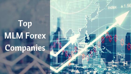 Forex mlm companies