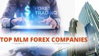 Top-MLM-Forex-Companies